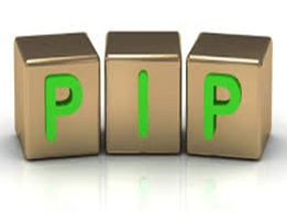 PIP insurance