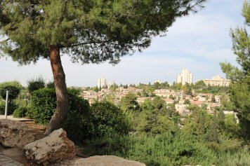 Another view from the Mt of Olives