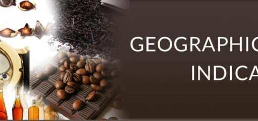 geographical indication right