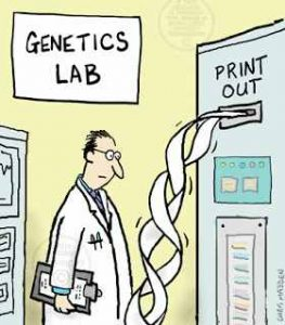 DNA cartoon
