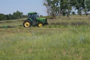 Tractor and Acreage Mowing