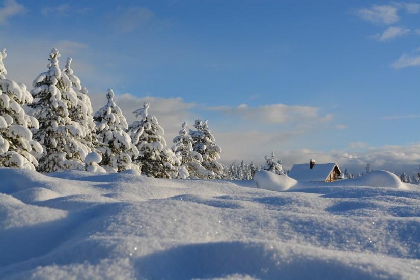 snow-1209991_1920.jpg