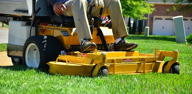 Lawn Care Schedule Northeast Us Annual Projects Lawn Chick