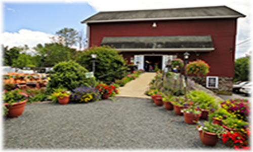 The Lawn Depot Garden Center Is A Full Line Garden Retailer, Specializing  In Professional Lawn And Gardening Supplies. We Sell Custom Blended Grass  Seed ...