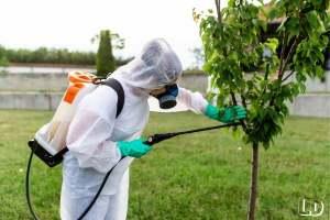 best electric sprayer for garden