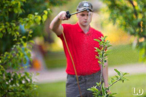 best sprayer for garden