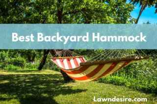 Best Backyard Hammock