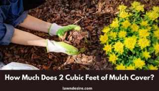 How Much Does 2 Cubic Feet of Mulch Cover