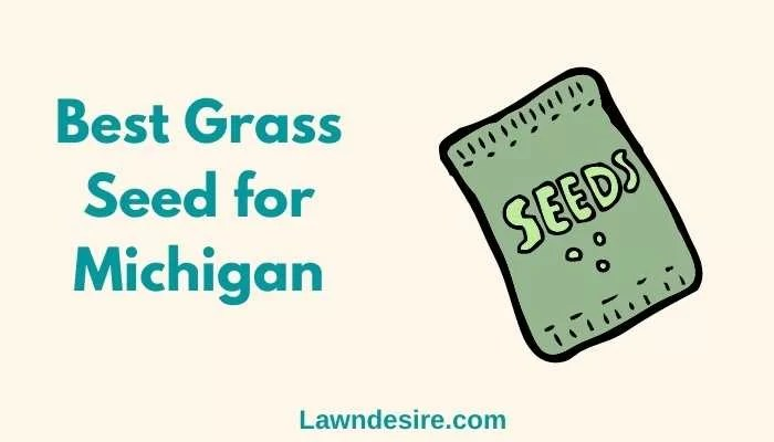 Best Grass Seed for Michigan