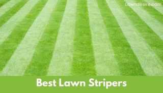 Best Lawn Stripers