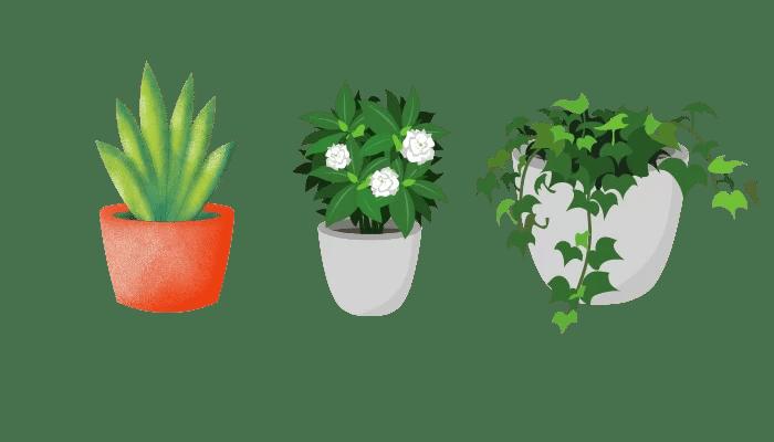 Best Paint for Outdoor ceramic pots