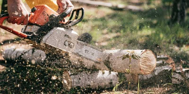 Chainsaw Bog Down When I Give It Gas