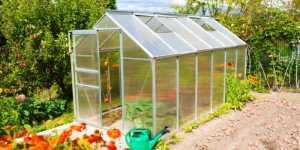 Best Pop Up Greenhouse