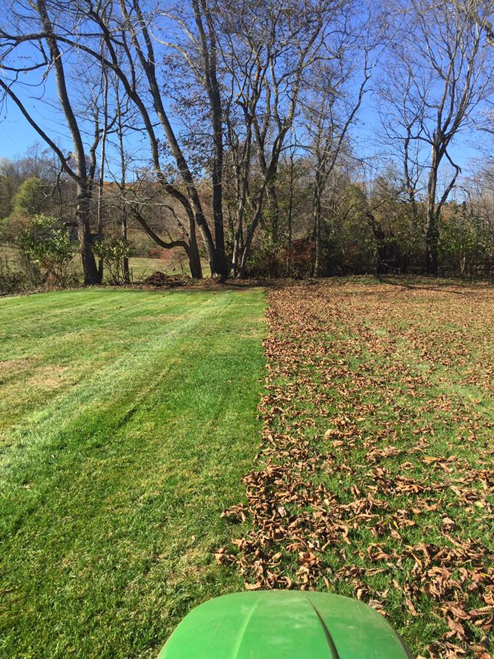 FALL/SPRING YARD CLEANUP | NEW MILFORD, CT | LAWN MOWING SERVICES | (607) 435-1731