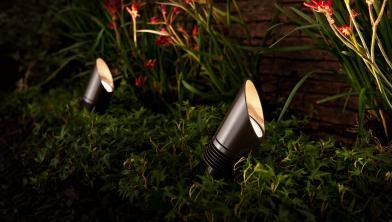 Outdoor Landscape Lighting: Up-Lights