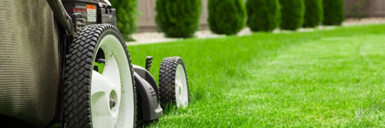 lawn-and-mower