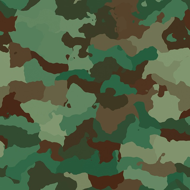 Is wearing camouflage by civilians illegal in Nigeria?