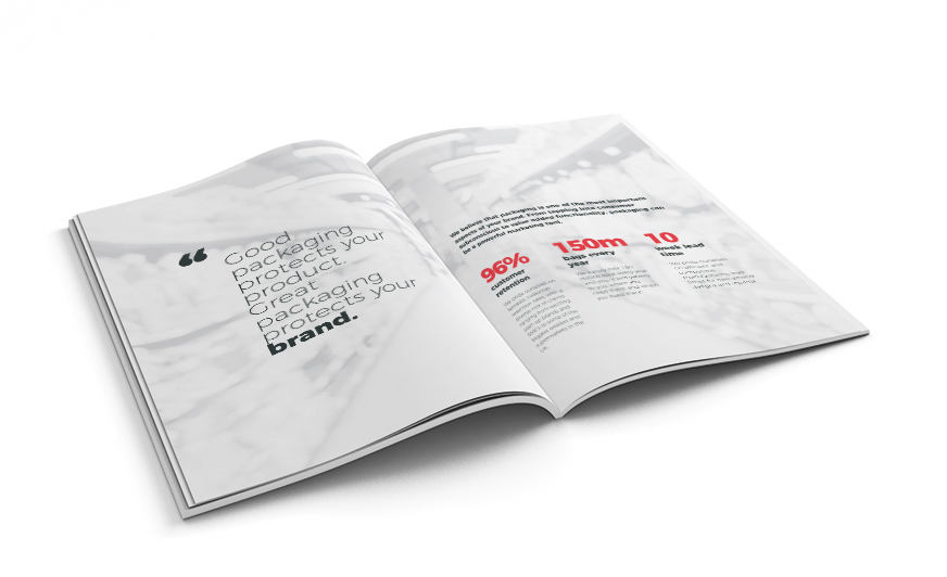 Law Print Marketing Brochure