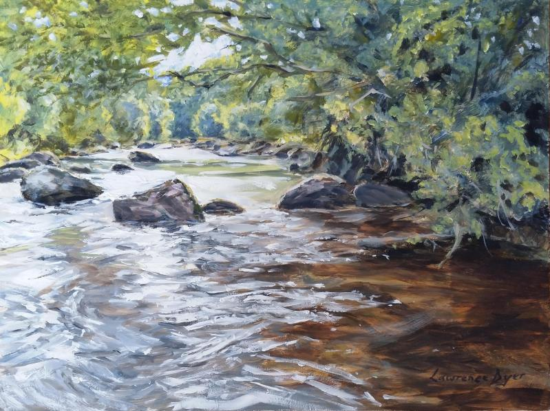 The East Dart River by Lawrence Dyer