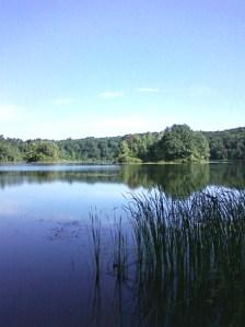 Hall Lake