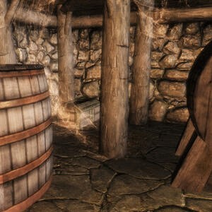 Pic of a cellar in Skyrim