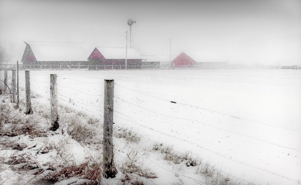 Snowy Morning, Photography, 29 x 17 matted and framed, $450.