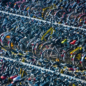 Bicycles, Photography, 28 x 22, matted and framed, $450