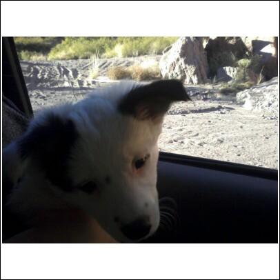 Osa takes the window seat