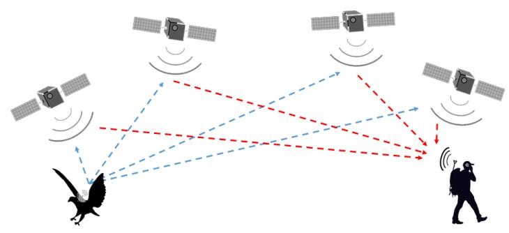 diagram of satellite tags