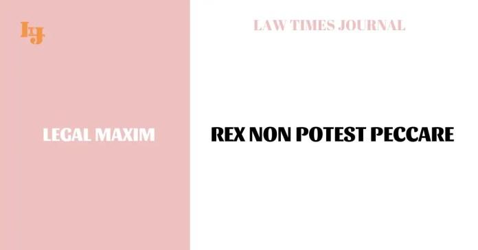 Rex non potest peccare