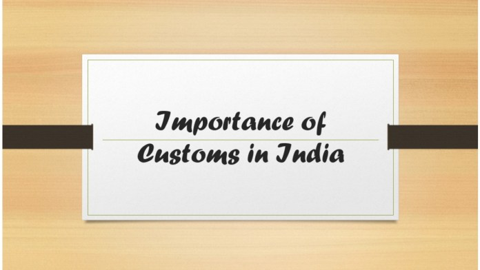 Importance of Customs in India
