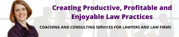 Photo of Allison Shields Johs Creating Productive Profitable and Enjoyable Law Practices | Coaching and Consulting Services for Lawyers