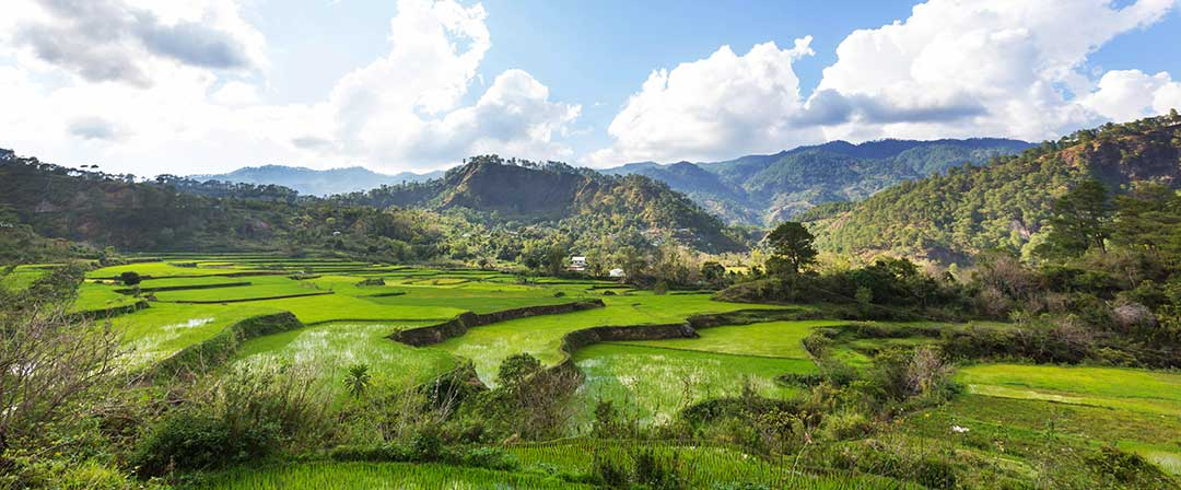 Inheritances such as farm land are divided according to guidelines in Philippine law.