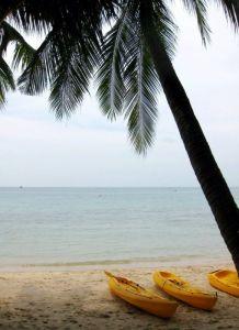 Yellow kayaks on the beach