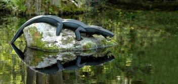 crocodile-sculpture-park