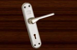 A-SS-22 - Stainless Steel Mortice Handle