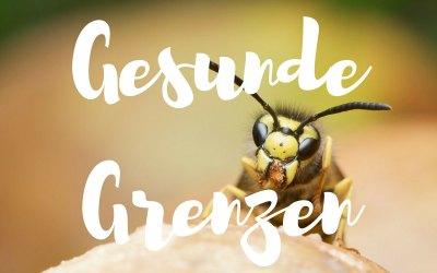 Die Botschaft der Wespe: Was Grenzen setzen wirklich bedeutet