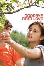 Goodbye First Love (2011)