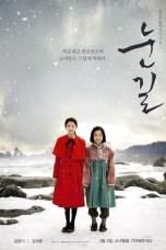 Snowy Road (2017)