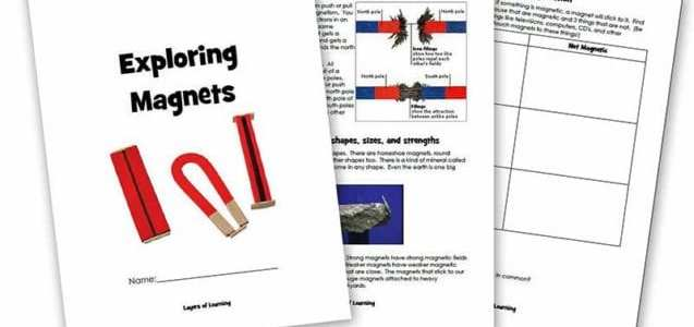 Printable Magnet Unit Book
