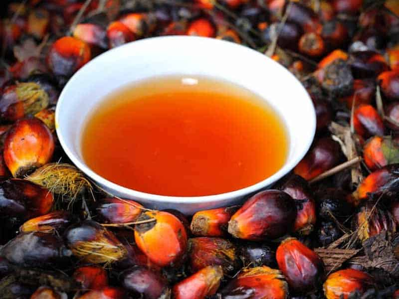 Red Palm Oil For Hair: Do You Really Need It? This Will Help You Decide!