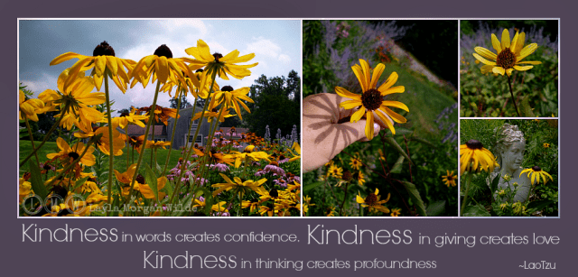 kindness quotes-Lao Tzu-garden