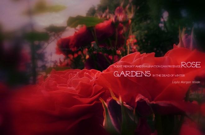 rose-garden-winter-quote