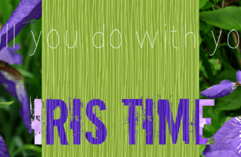 Iris time quote