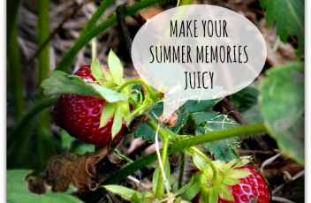 summer strawberries quotes