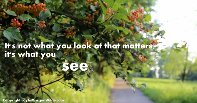 utumn berries quote-seeing vision