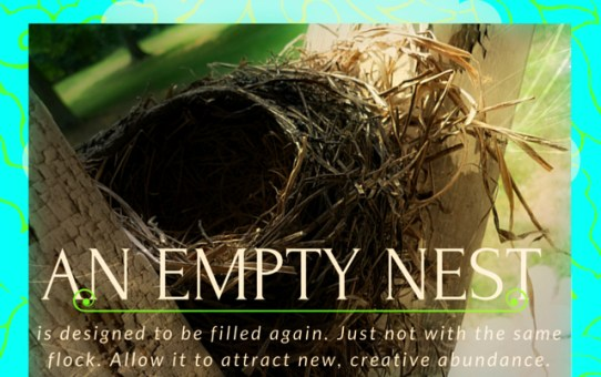Feathering An Empty Nest