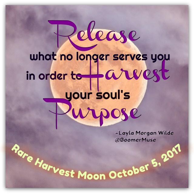 full_moon_harvest_Spell