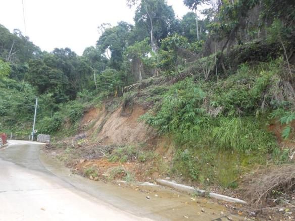 layog country farm Landslide near our nursery