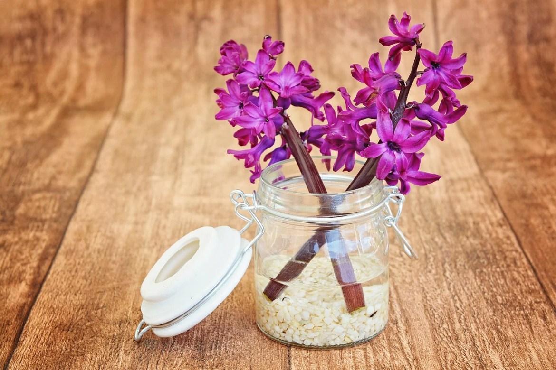 hyacinth 747131 1280 - Благодарим за обращение к нам